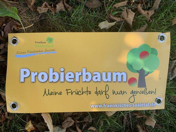 Probierbaum-Banderole